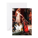 Accolade / Collie pair Greeting Cards (Pk of 10)