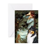 Ophelia / Collie (tri) Greeting Card