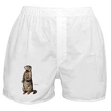 Woodchuck Animal Boxer Shorts