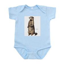 Woodchuck Animal Infant Creeper
