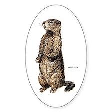 Woodchuck Animal Oval Decal