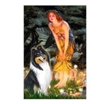 Midsummer's Eve / Collie (tri) Postcards (Package