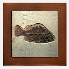 Fish Fossil Art Framed Tile