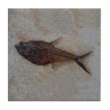 Fish Fossil #3 Art Tile Coaster