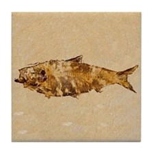 Fish Fossil Tile Coaster