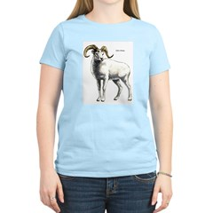 Dall's Sheep (Front) Women's Pink T-Shirt