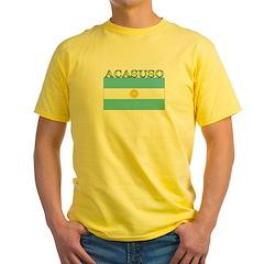 Acasuso Argentina Flag T