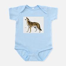 Coyote Infant Creeper
