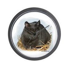Jonesy the Chartreaux Cat Wall Clock