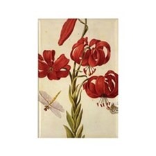 Turks Cap Lily Rectangle Magnet