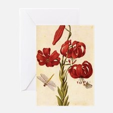 Turks Cap Lily Greeting Card