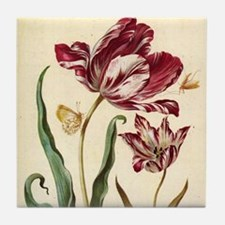 Tulip Diana by Merian Tile Coaster