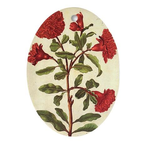 Pomegranate by Merian Oval Ornament
