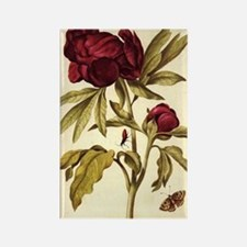 Peony by Merian Rectangle Magnet