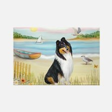 Rowboat / Collie (tri) Rectangle Magnet (10 pack)
