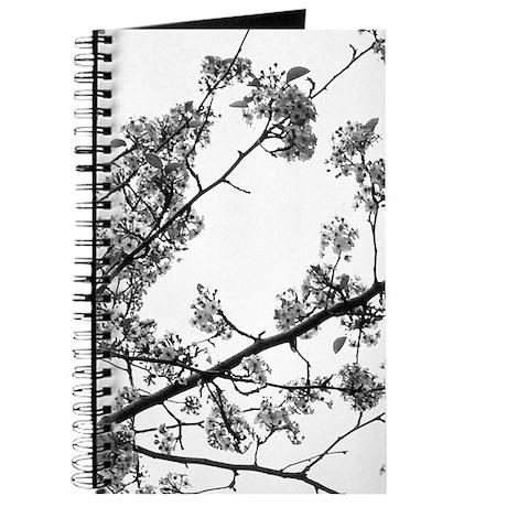 SAKURA Monotone Cherry Blossoms Journal B