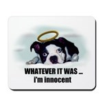WHATEVER IT WAS -IM INNOCENT Mousepad