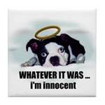 WHATEVER IT WAS -IM INNOCENT Tile Coaster