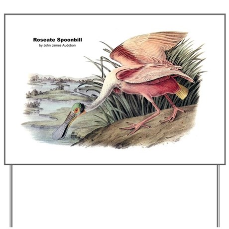 Audubon Spoonbill Bird Yard Sign
