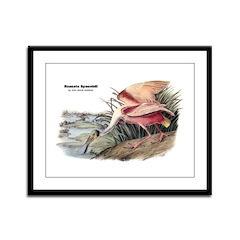 Audubon Spoonbill Bird Framed Panel Print