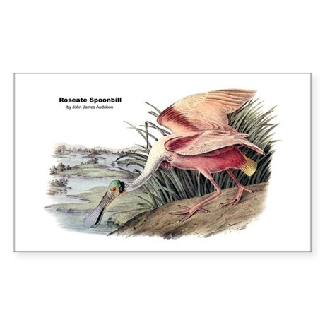 Audubon Spoonbill Bird Rectangle Sticker