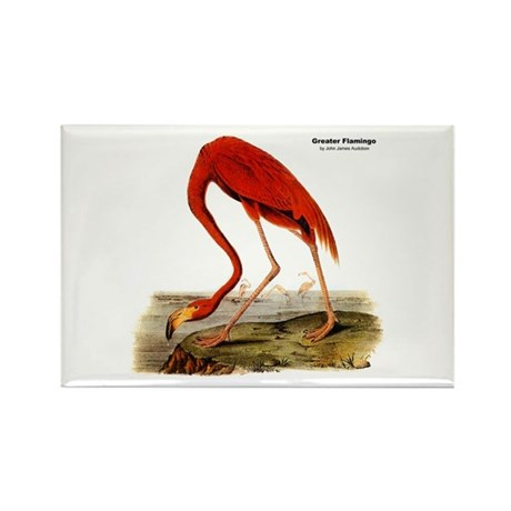 Audubon Flamingo Bird Rectangle Magnet