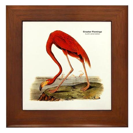 Audubon Flamingo Bird Framed Tile