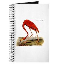 Audubon Flamingo Bird Journal