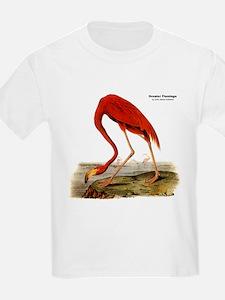 Audubon Flamingo Bird (Front) T-Shirt