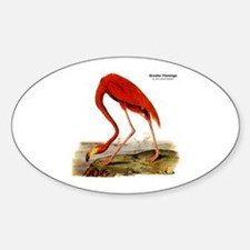 Audubon Flamingo Bird Oval Decal