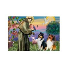 St Francis / Collie Pair Rectangle Magnet (10 pack