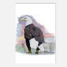 Eagle Spirit Postcards (Package of 8)