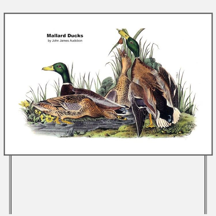 Audubon Mallard Ducks Yard Sign