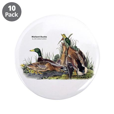 """Audubon Mallard Ducks 3.5"""" Button (10 pack)"""