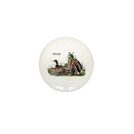 Audubon Mallard Ducks Mini Button