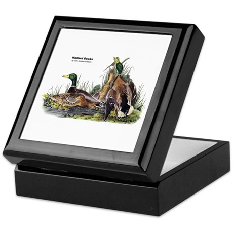Audubon Mallard Ducks Keepsake Box