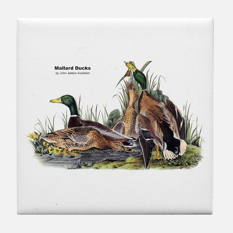 Audubon Mallard Ducks Tile Coaster