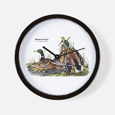 Audubon Mallard Ducks Wall Clock