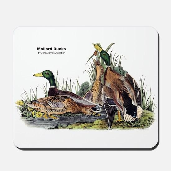 Audubon Mallard Ducks Mousepad