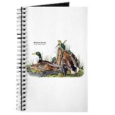 Audubon Mallard Ducks Journal