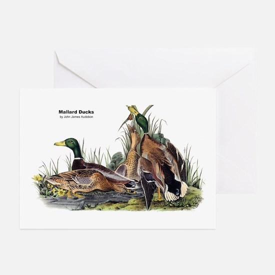 Audubon Mallard Ducks Greeting Cards (Pk of 10)
