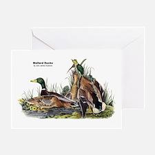 Audubon Mallard Ducks Greeting Card