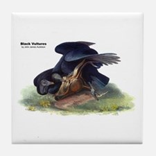 Audubon Black Vultures Bird Tile Coaster