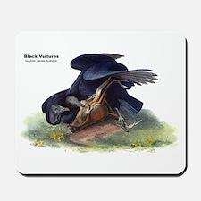 Audubon Black Vultures Bird Mousepad