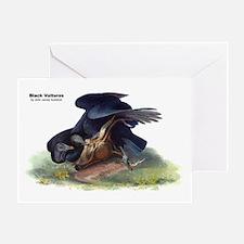 Audubon Black Vultures Bird Greeting Card