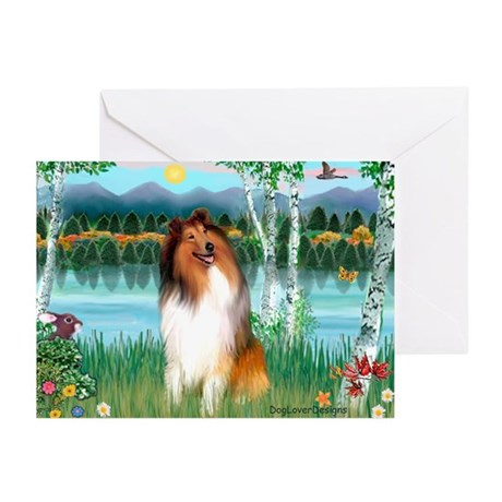 Birches / Collie (s) Greeting Cards (Pk of 20)