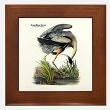 Audubon Great Blue Heron Framed Tile