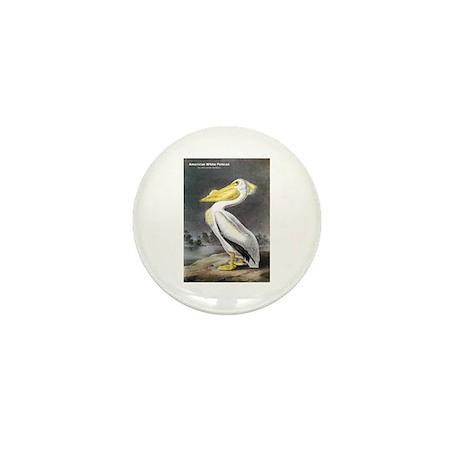 Audubon American White Pelican Mini Button (10 pac