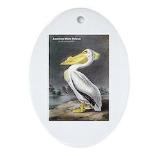 Audubon American White Pelican Oval Ornament