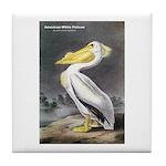 Audubon American White Pelican Tile Coaster